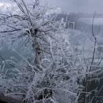 """""""Crystal Niagara"""" by sol"""