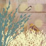 """""""Birds with Rosegold Pussy WIllow Illustration"""" by euphorianchic"""