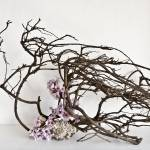 """Ikebana-097"" by Zen-Images"