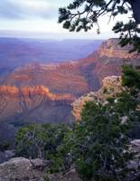 Grand Canyon South Rim #4