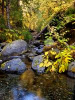 Bear Creek, Trinity Alps