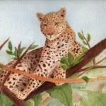 """Leopard"" by catspaw"