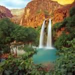 """Havasu Falls"" by mikenorton"