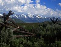 Tetons and Buck & Rail Fence