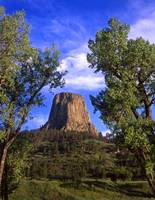 Devils Tower #16