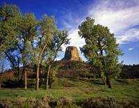 Devils Tower#17