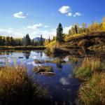 """""""Gunnison Wetlands"""" by mikenorton"""