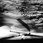 """""""Imagekind"""" by nickisnead"""
