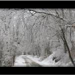 """Winter country Lane"" by sherryswest"