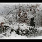 """""""winter scene"""" by sherryswest"""