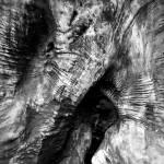 """grainlines"" by Retrograph"