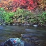 """""""Logan River Rocks"""" by mikenorton"""