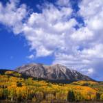 """Kebler Pass Aspens and Mountains"" by mikenorton"