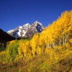 """Maroon Bells and Small Aspens"" by mikenorton"