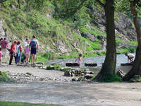 Dovedale Stepping Stones  (11281-RDA)