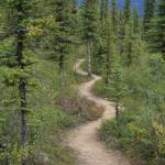"""""""Three Lakes Trail"""" by joshuaguttman"""