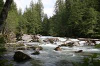 North Fork Sauk River 2