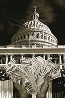 Decorated US Capitol B and W with money 2 duotone