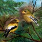 """Evening Grosbeaks"" by FTMcKinstry"
