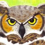 """""""Owl Portrait"""" by twincedar"""