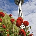 """Space Needle Garden"" by robgerman"