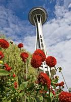 Space Needle Garden