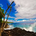 """Big Island South Shore No.2"" by robgerman"
