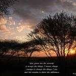"""Serenity Serengeti Sunset"" by patgleasonphotography"