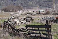 The fence in the country