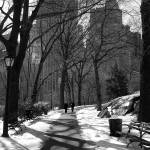 """A Walk in the Park"" by MelissaMabie"
