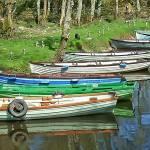 """Boats Near Cast;e Ross, Killarney National Park, R"" by billbarber"