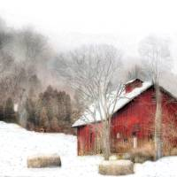 Wintery Mix Art Prints & Posters by william griffin