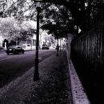 """Gray Walkway"" by SMRose"