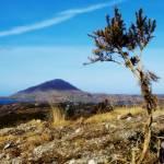 """Connemara National Park"" by damokeen"