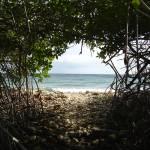 """Aruba See the Light"" by ryancarey"