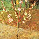 """Almond Tree in Blossom"" by ArtLoversOnline"