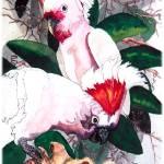 """""""Two Pink Cockatoos"""" by KarenStrumLLC"""