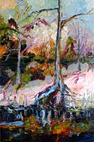 Black Water Suwannee River Florida Oil Painting