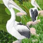 """Two Pelicans"" by KarenStrumLLC"