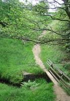 Grindsbrook Foot-bridge, Edale  (13350-RDA)