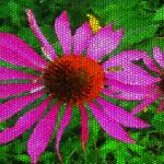 """Cone Flowers with a Differance"" by RobertBurns"