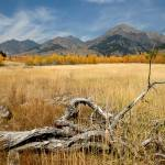 """ID SawtoothNRA Boulder Mountains and log"" by eye4nature"