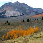 """ID SawtoothNRA Boulder Mountains 0828"" by eye4nature"