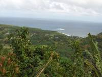View from the road to Hana