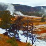 """Yellowstone Hot Springs"" by oilboy"
