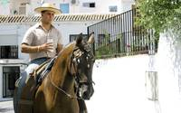 Man riding a horse at the Mijas Feria, Spain