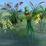 """Resplendent Quetzal - Orchids, Bromiliads,TreeFrog"" by savanna"