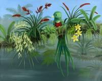 Resplendent Quetzal - Orchids, Bromiliads,TreeFrog by Savanna Redman