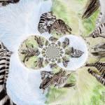 """Zebra Chaos"" by JoanRye"