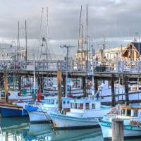 Fisherman's Wharf Harbor, San Francisco Art Prints & Posters by ericignacio